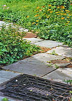 Cleveland Electric Illuminating Cover Garden Path